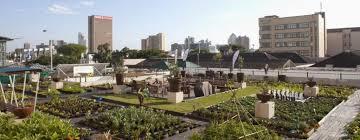 World Economic Forum: Urban Innovations